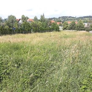 Zazidljivo zemljišče - Pernica